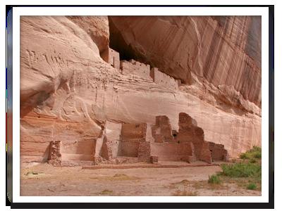 pat canyon