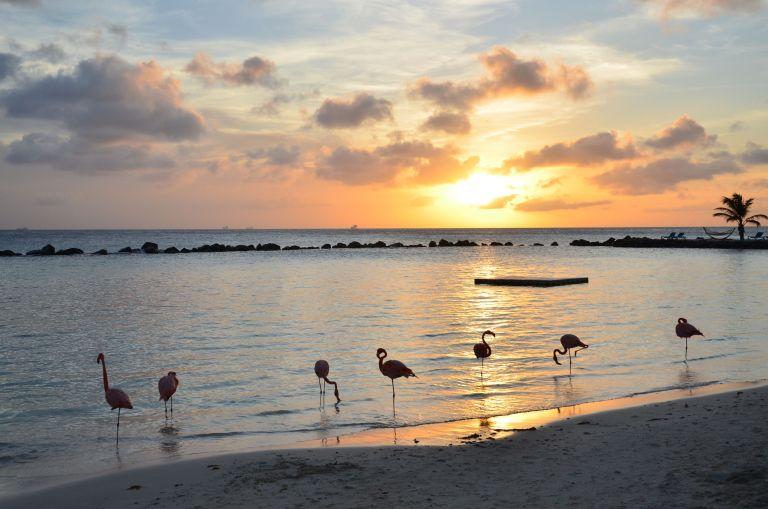 Aruba Island – Netherlands