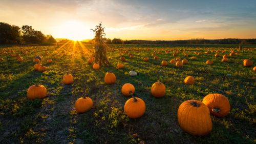 October Travel Tips