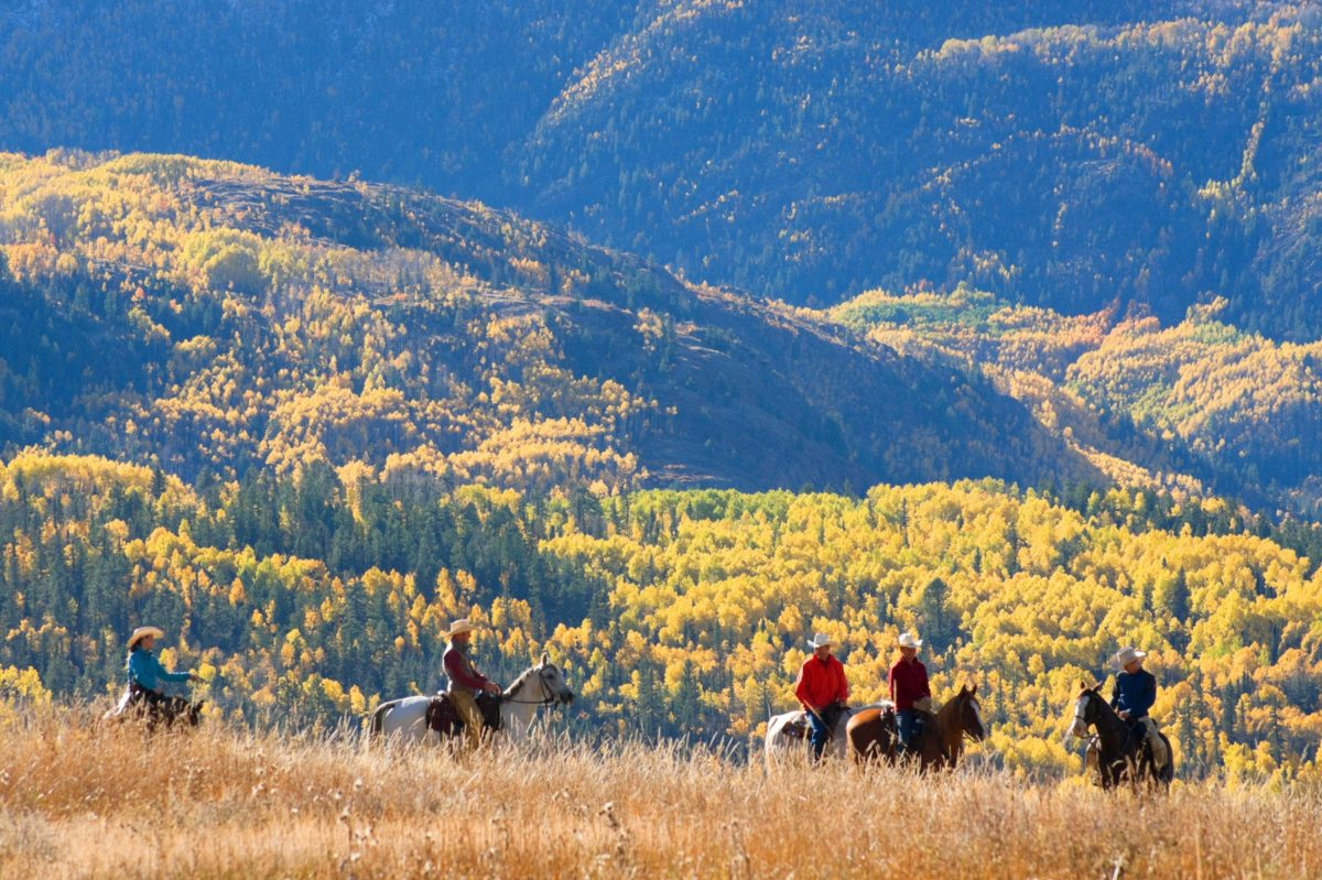 Reasons to Visit Wilderness Club, Montana